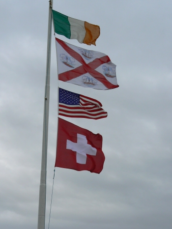 Flags Fly High